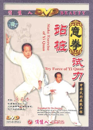 Yi Quan - Testing Force and Stake exercise (Zhan Zhuang)